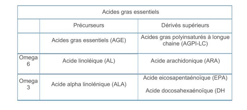 Tableau Acides Gras Essentiels